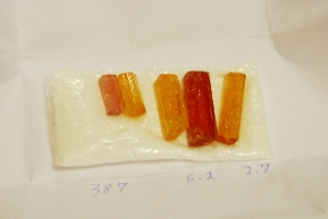 Rough Imperial Topaz crystals from  the  Ouro Preto region