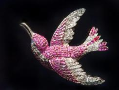 1Humming Bird